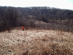 Photo of a lone rabbit hunter dwarfed by the hills at Jim Edgar Panther Creek State Fish & Wildlife Area